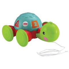 Каталка на верёвке Учёная черепашка Fisher-Price (Y8652)